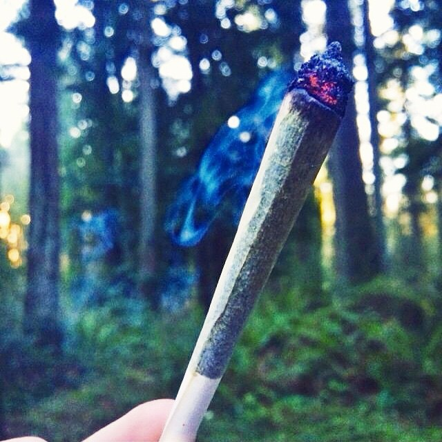 Joint Weed
