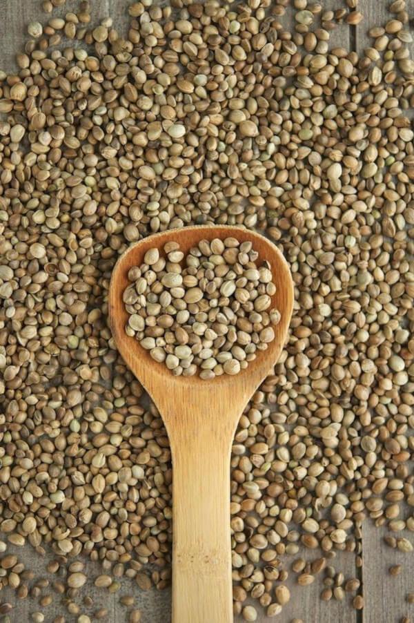 Olio di canapa estrazione tramite semi